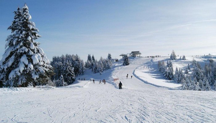 Caminetto Mountain Resort 2847