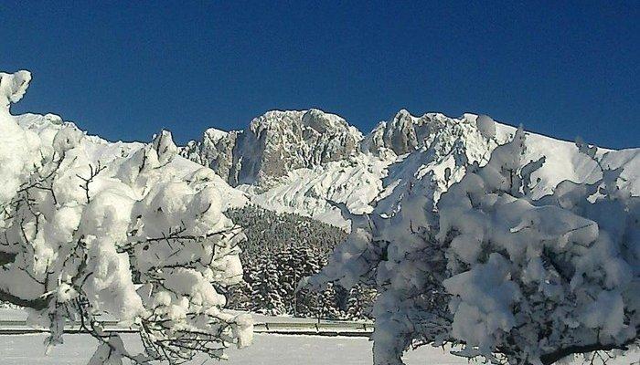 Hotel Des Alpes 3805