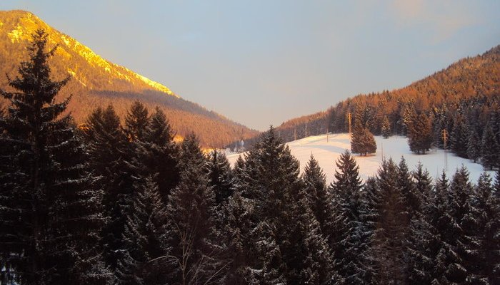 Hotel Des Alpes 3813