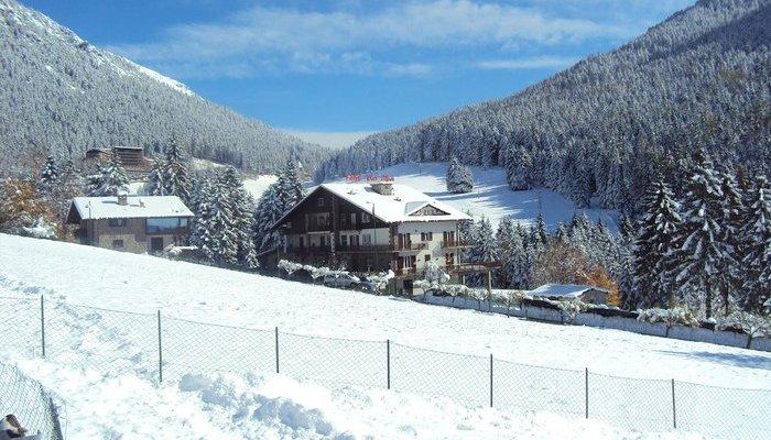 Hotel Des Alpes 3817