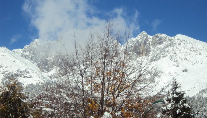 Hotel Des Alpes 3820